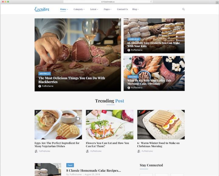 Escritor - mẫu website tin tức khám phá